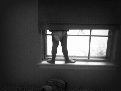 window-bex